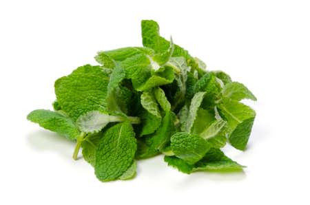 apple mint