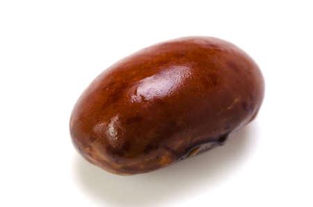 pinto bean: pinto bean Stock Photo