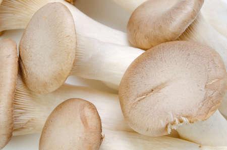 grosse fesse: champignons trompette roi