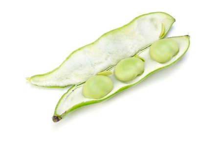 garden truck: broad bean