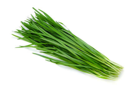 leeks: garlic chives Stock Photo