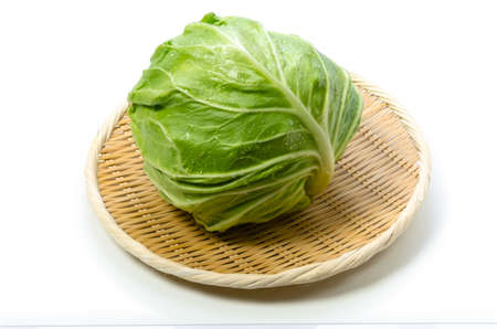 cabbage Stock Photo - 13808073