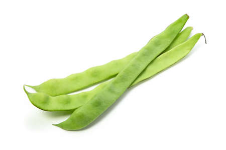 common bean Stock Photo - 13807891