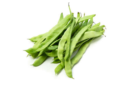 common bean Stock Photo - 13807896