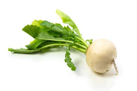 garden truck: turnip