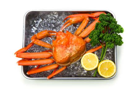 crustacea: red snow crab