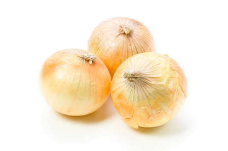 onion Stock Photo - 13995952