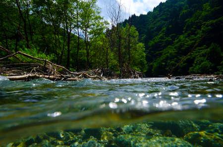 hillwalking: Underwater photography series    Obonaigawa River. This image was taken by underwater SLR.