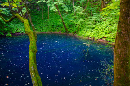 sanchi: Juniko Lake, Shirakami Sanchi , Japan. Stock Photo