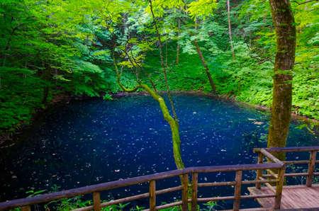 sanchi: Juniko Lake, Shirakami Sanchi, Japan. Stock Photo