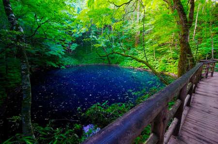 hillwalking: Juniko Lake, Shirakami Sanchi, Japan. Stock Photo