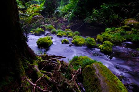hillwalking: Mototaki River, Chokai National Park, Japan. Stock Photo