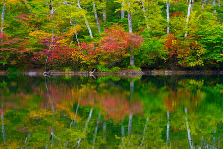 hillwalking: Kamaike pond, Joshinetsu kogen National Park, Japan.