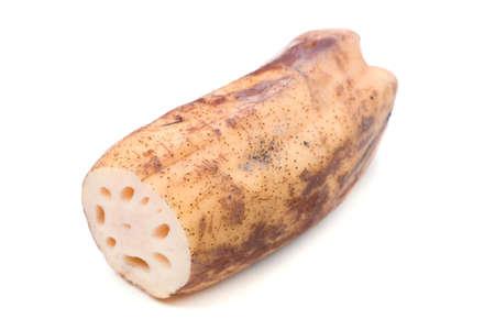 loto: lotus root