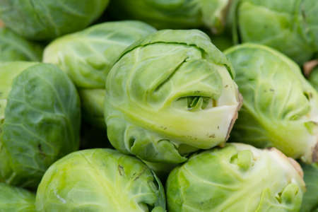 Brusseles sprouts Stock Photo