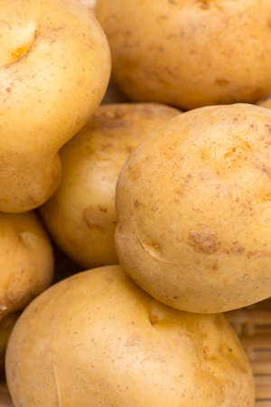 pomme de terre: Potato-Solanum tuberosum Stock Photo