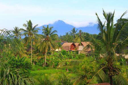 tegalalang: Village surrounding rice terrace, Bali, Indonesia horizontal Stock Photo
