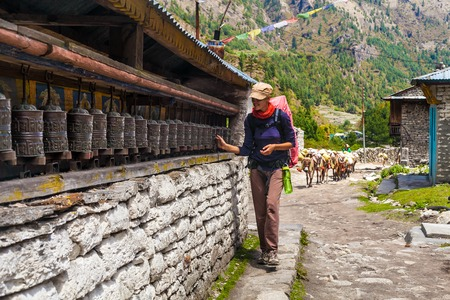 Young Woman Wearing Backpack Trekking Touching Tibetan prayer Wheels or Prayers Rolls Faithful Buddhists.Caravan Animal Donkeys Loaded Bags Background.Himalaya Village Mountains. Horizontal Photo