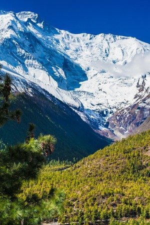 Landscapes Snow Mountains Nature Morning Viewpoint.Mountain Trekking Landscape Background. Nobody photo.Asia Vertial picture. Sunlights White Blue Sky. Himalayas Rocks