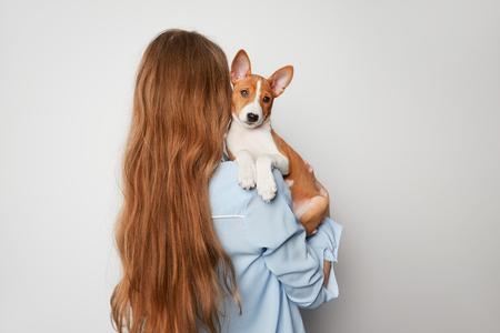 Cheerful young woman hugging and kissing her puppy basenji dog. Love between dog and owner. Isolated on white background. Stock Photo