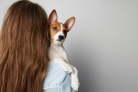 Handsome redhead hair young female hugging and kissing her puppy basenji dog. Love between dog and owner. Isolated on white background.