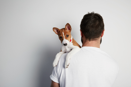 Handsome bearded man snuggling and hugging his basenji puppy dog, close friendship against a white background. Copy paste space mock-up Stock Photo