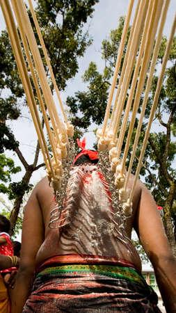 hindues: thaipusam devoto con ganchos en la espalda con cuerdas tirando