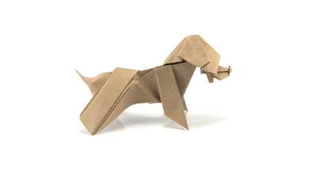 origami paper: origami works paper made to be dog.; Solution public in internet web site.