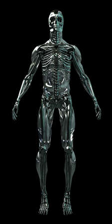 chrome man: This is actually a hybrid of several skeleton
