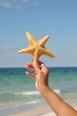 Vrouw hand holding een Starfish