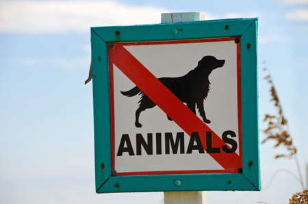 Weathered No Animals Sign at Beach Banque d'images - 7700393