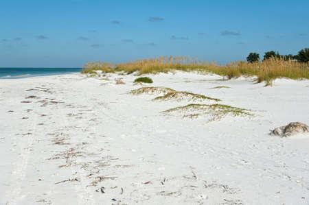アンナ マリア島、フロリダ州の美しい海岸線 写真素材
