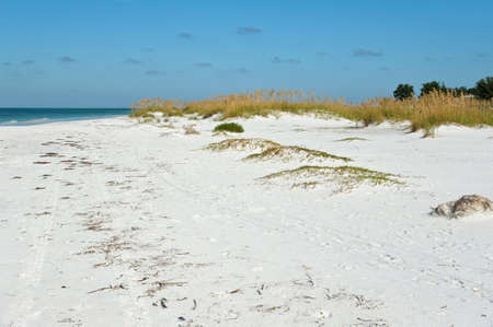 Beautiful Coastline on Anna Maria Island, Florida