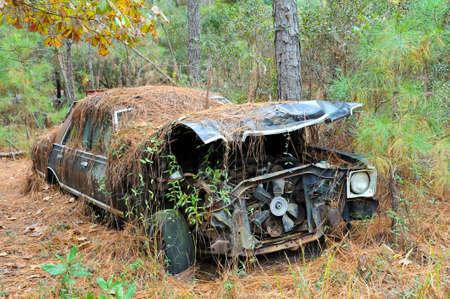 An old rusted out scrap car that has been abandoned in the woods