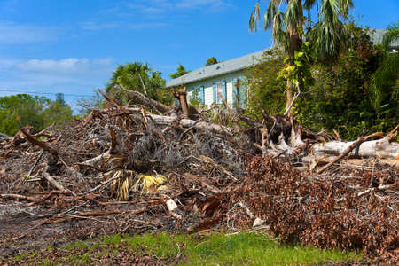 ANNA MARIA ISLAND, FL - October 2, 2017:Aftermath of Hurricane Irma on Anna Maria Island, Florida. Piles of Trees, Branches and debris remain to be cleared away from the neighborhood streets. 新聞圖片