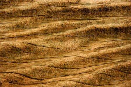 Highly textured old wooden background Stock Photo - 9068727