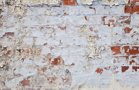 flaking: Flaking white paint on an old brick wall