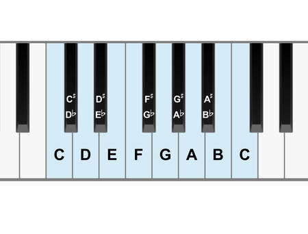 octave: Simple piano keyboard showing full octave of notes vector Illustration