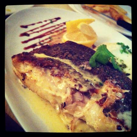barramundi: Grilled barramundi steak and white Italian gourmet sauce Stock Photo