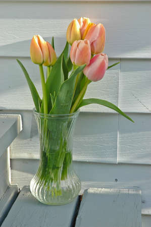 a bunch of pink tulips in a vase