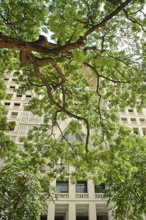 postmodern: old post-modern building and lush tree
