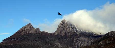 bushwalk: Foggy peak of Mt Cradle in Tasmania Australia