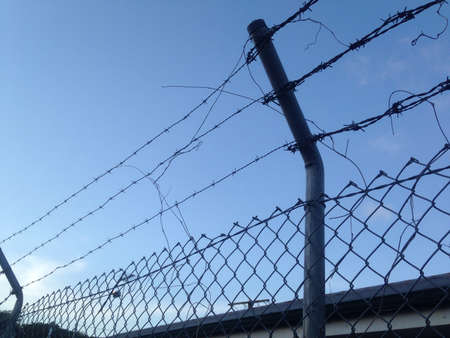 jailed: Barbed wired fence look up to see blue sky