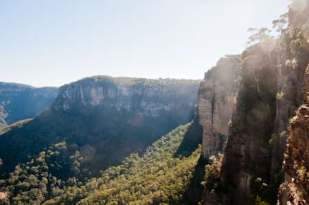 Deep forest with tall cliff and sun beam in the afternoon in Blue Mountain NSW Australia