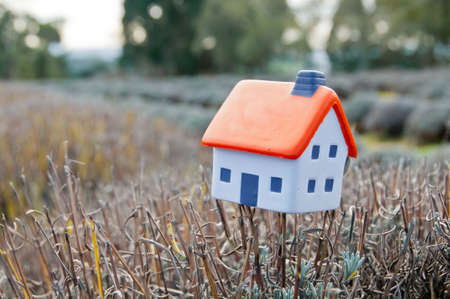 Small soft miniature toy house placed on lavender branch in farm in France