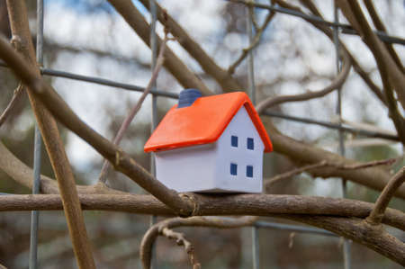 Miniature soft toy house on tree branch 写真素材 - 149115239