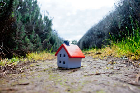 Small miniature house soft toy placed on lavender farm floor 写真素材