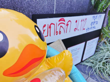 BRISBANE, AUSTRALIA - NOVEMBER 29, 2020: Yellow rubber duck represents a sympbol of innocent people in the peacefully rally at King George Square, City Hall, in Brisbane Australia to protest the dictatorship of the prime minister Prayuth Chan-ocha in Thai