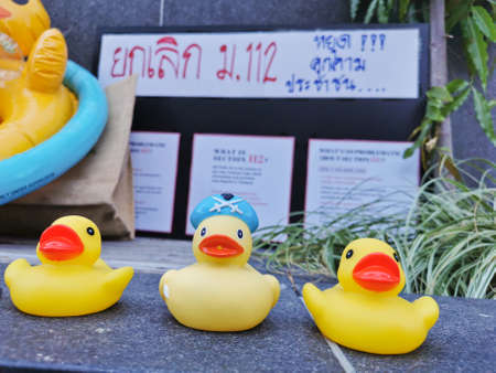 BRISBANE, AUSTRALIA - NOVEMBER 29, 2020: Group of yellow rubber ducks represents a sympbol of innocent people in the peacefully rally at King George Square, City Hall, in Brisbane Australia to protest