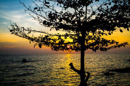 Silhouette tree at sunrise, Koh Munnork Island, gulf of Thailand Stock Photo